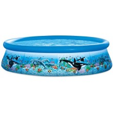 "INTEX OCEAN REEF EASY SET® POOL , Ages 6+ 10'x30"" 28124NP"